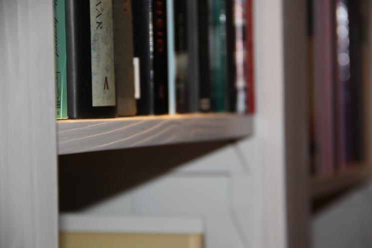 Boekenkast met verlichting, uitgeborsteld hout, vestelbare planken, amsterdam